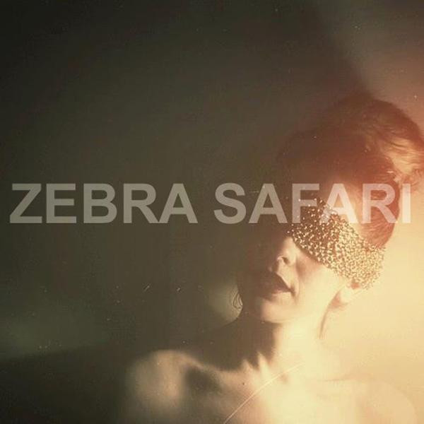 zebrasafari