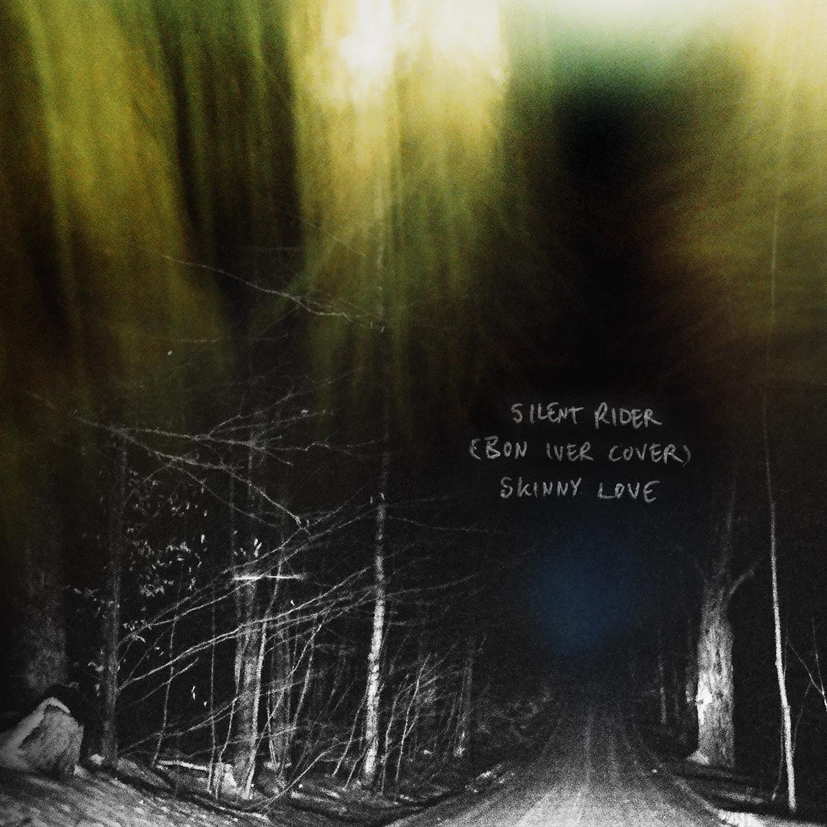 Skinny Love Cover Art