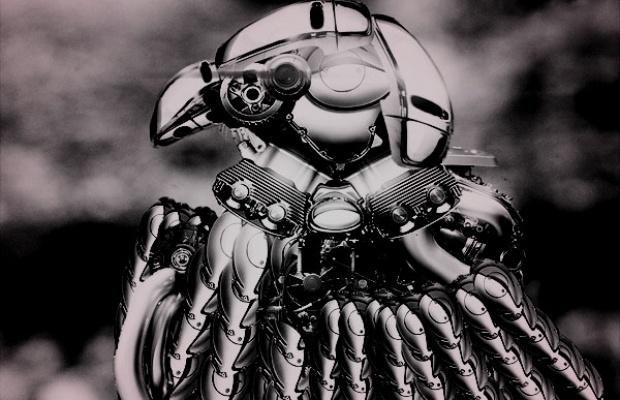EDM-robot-eagle
