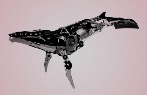 EDM-robot-whale