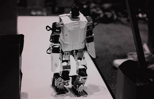 EDM-robot-bear